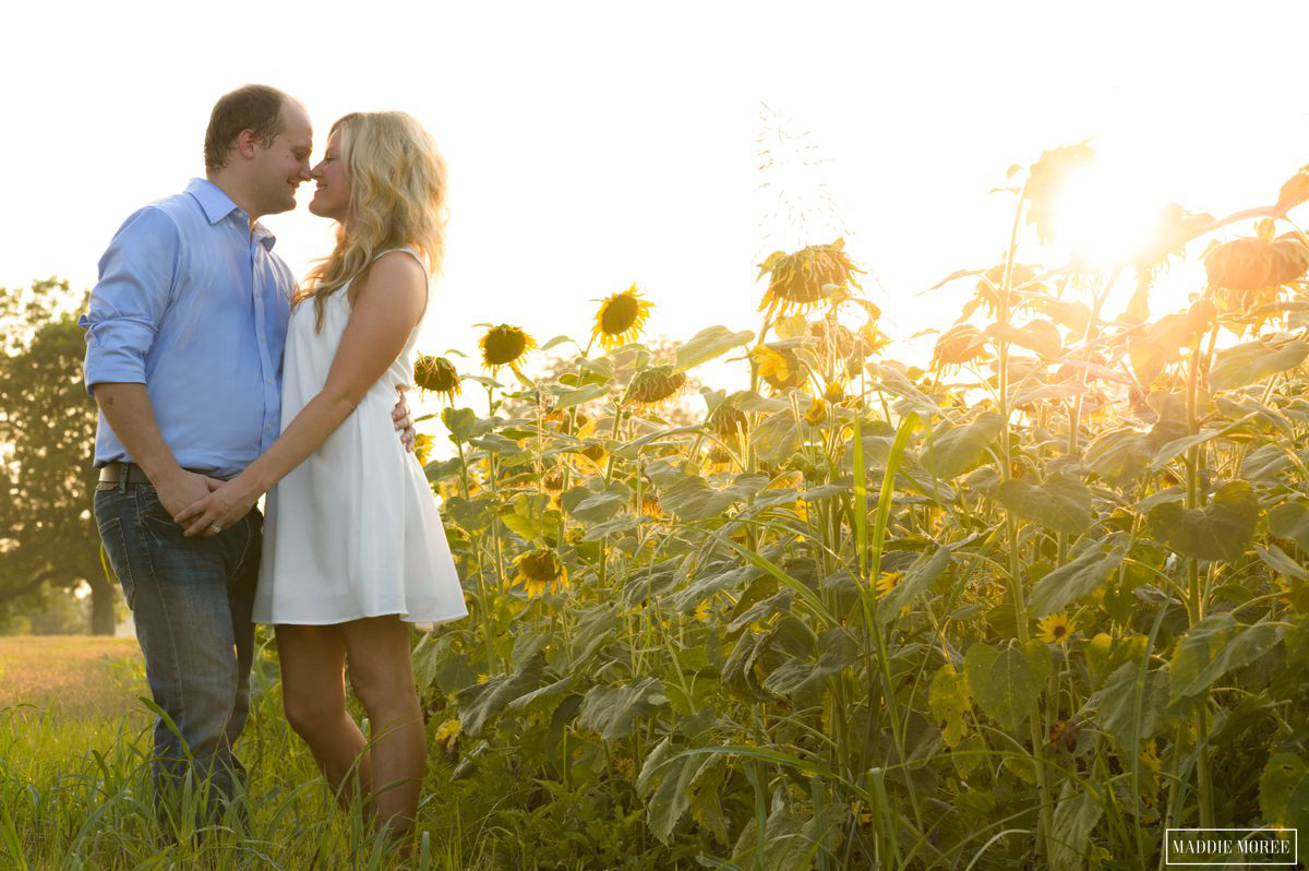 engaged couple at sunflower field