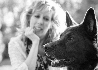 Madison Yen Family Portraits German Shepherd 750_5629